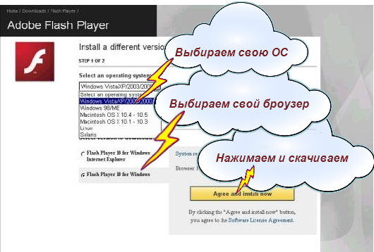 Страница выбора версии Adobe Flash Player